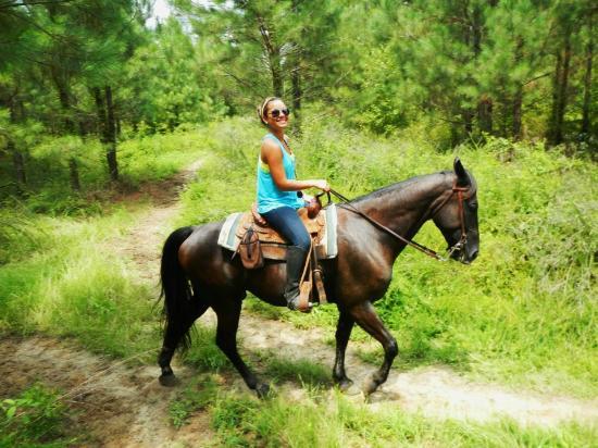 Horse Week At Myrtle Beach