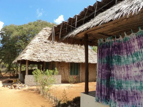 Chole Foxes Lodge Prices Amp Hotel Reviews Mafia Island