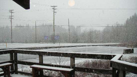 Pacific Rim Visitor Centre : Let it snow, let it snow, let it snow!