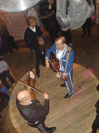 El Chihuahua: mariachi che suonano dal vivo