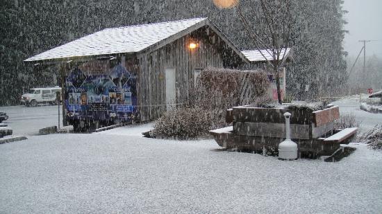 Pacific Rim Visitor Centre : Snow!