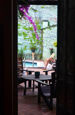 Ukelele Hostel: View from common area into pool area