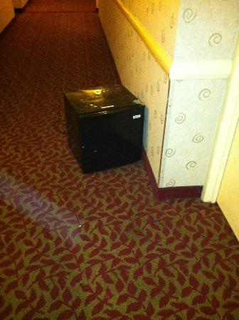 Radisson Hotel Philadelphia Northeast: Discarded fridge in the hallway
