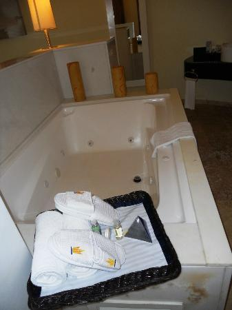 Grand Riviera Princess All Suites Resort & Spa: Jacuzzi in the Laguna Villa