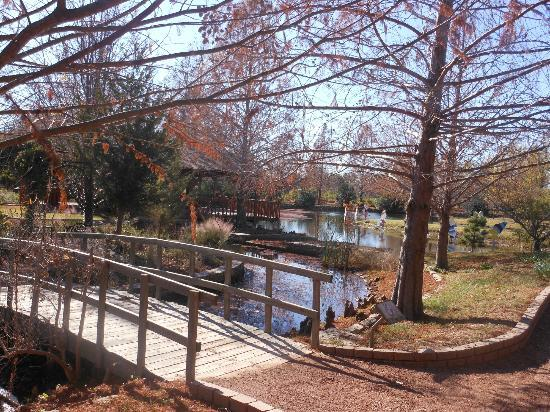 Clark Gardens Botanical Park: One of the Wooden Bridges