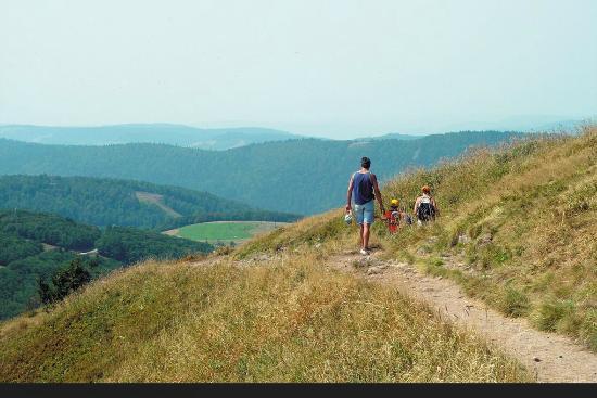 Camping Sites et Paysages Au Clos de la Chaume : Route des Crêtes au départ du Camping au Clos de la Chaume Vosges
