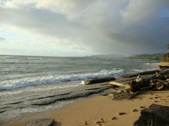 Kauai Coast Resort at the Beachboy: The beach shore