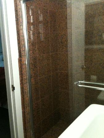 Royal Park Hotel: Shower