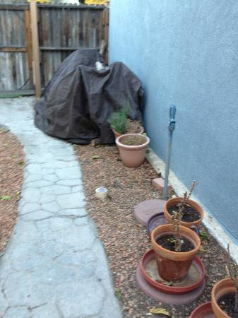 Downtown Historic Bed & Breakfasts of Albuquerque: Private Yard at Cabinet House