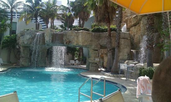 LOVE the Hyatt Regency Sarasota