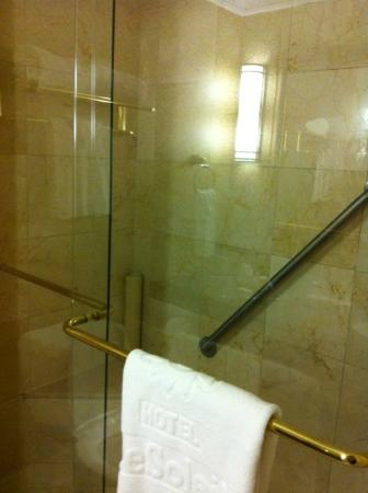 Executive Hotel Le Soleil: Shower