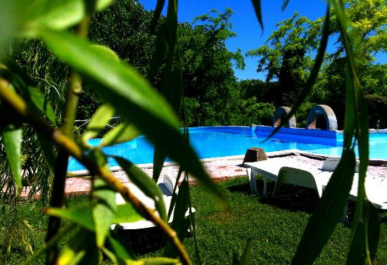 Podere Lupinaio: the pool