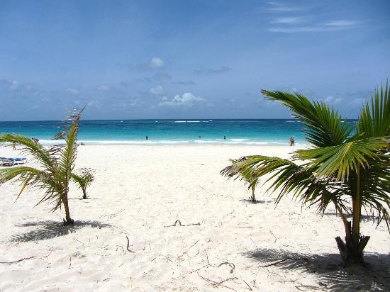 Occidental Caribe: in the shaded area of the beach