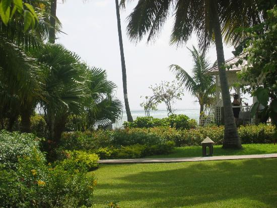 Sandals Halcyon Beach Resort: Lush grounds and gardens view from our cottage