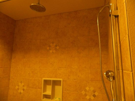 Westgate Branson Woods Resort: Shower ...Could use another shower head