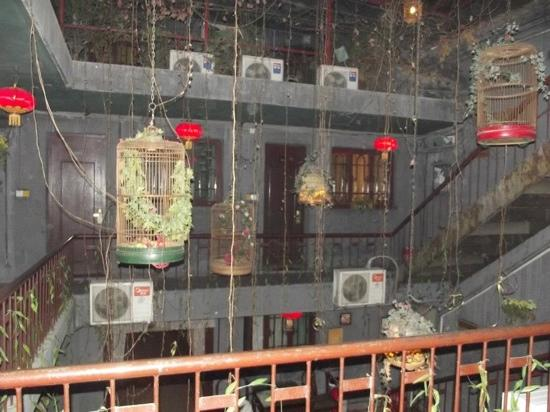 Shuyuan Youth Hostel: the hotel at night