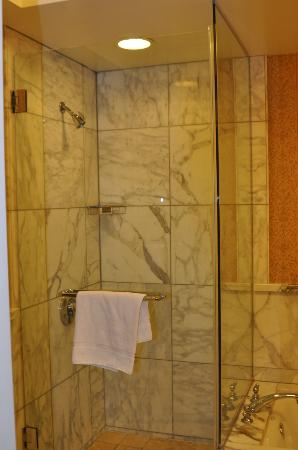 Shower (next to tub) - Picture of Green Valley Ranch Resort and Spa ...