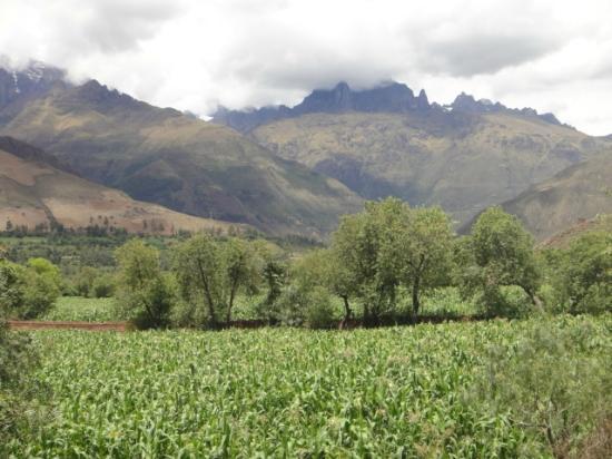 Aranwa Sacred Valley Hotel & Wellness: Caminando por los alrededores