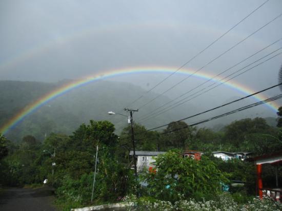 La Montana y el Valle Coffee Estate Inn: Boquete has a surplus of rainbows