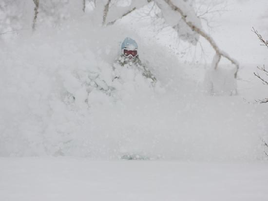ルスツリゾートスキー場, Powder Snow!!