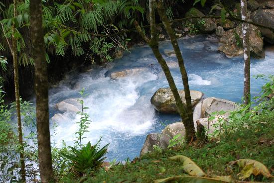 Blue River Resort & Hot Springs : The Blue River