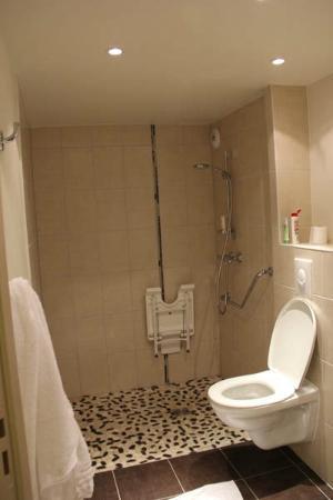 Hôtel balladins Colmar : Big space and clean bathroom