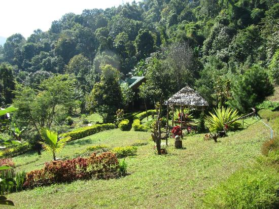 Limeleaf eco-Lodge : Main House and Garden.