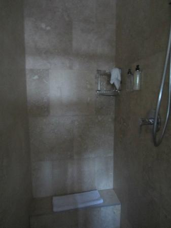 The Walden House: Shower