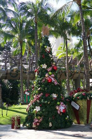 Royal Hawaiian Center : クリスマスツリー