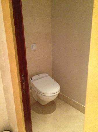 Park Hyatt Paris - Vendome: toilet