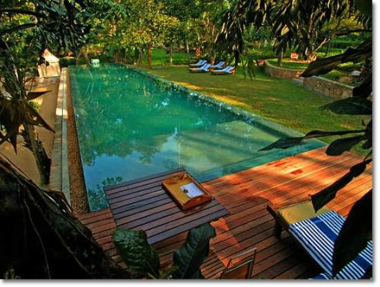 Apa Villa Illuketia: Infinity pool set in the lush garden