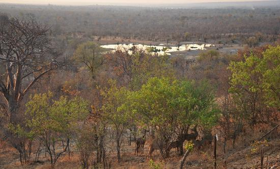 Victoria Falls Safari Club: view