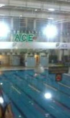 Ace Water Spa: lap pool