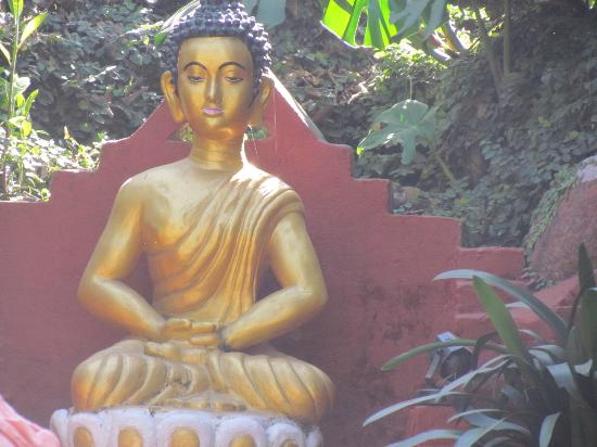 Hotel Buddha: Lord Buddha's Statue in the garden