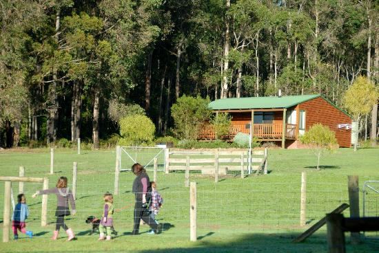 Diamond Forest Farm Stay: The cottages are close to the animals