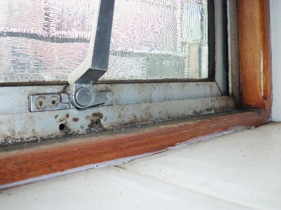 Tregenna Hotel: DISGUSTING MOULDY WINDOWS