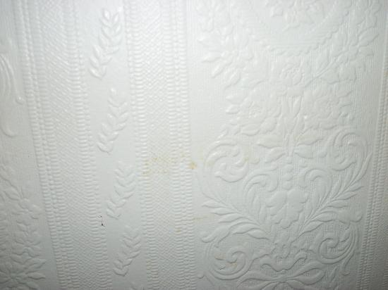 Tregenna Hotel: DIRTY STAINED WALLS
