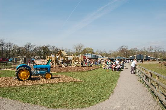 Cefn Mably Farm Park