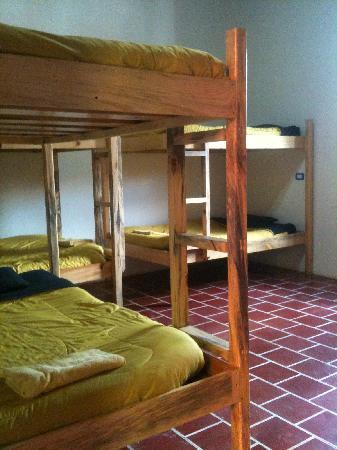 Zoola Antigua Chill Bistro: Dorms