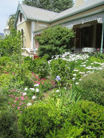 Bonne Esperance: Amazing scented garden!