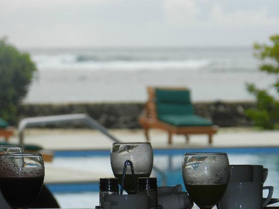 Finch Bay Eco Hotel: playa