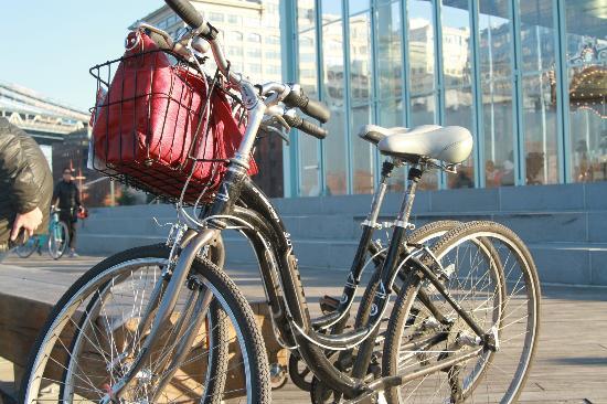 Blazing Saddles Bike Rentals & Tours : The rented bikes