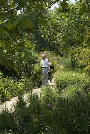 Adkins Arboretum: Visitors are welcome to bring their dogs for a walk along the paths