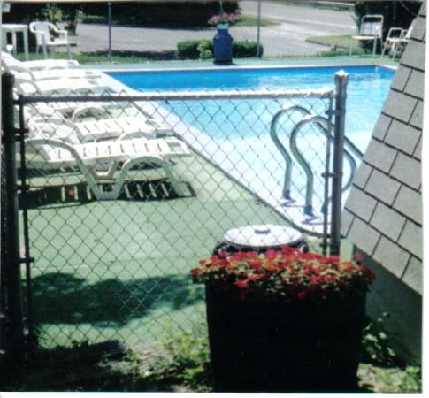 Green Valley Motel : pool
