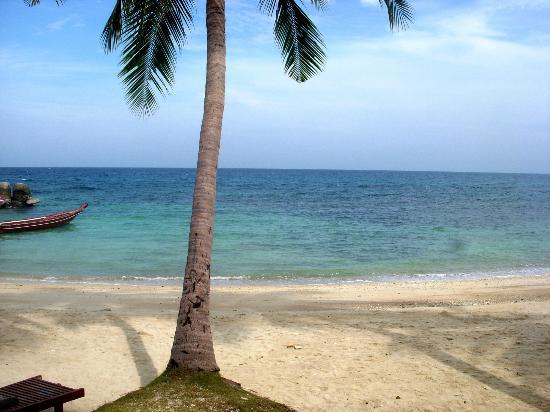 賽努安海灘照片
