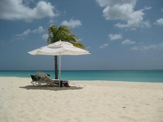 Bucuti & Tara Beach Resort Aruba: our little slice of paradise :)