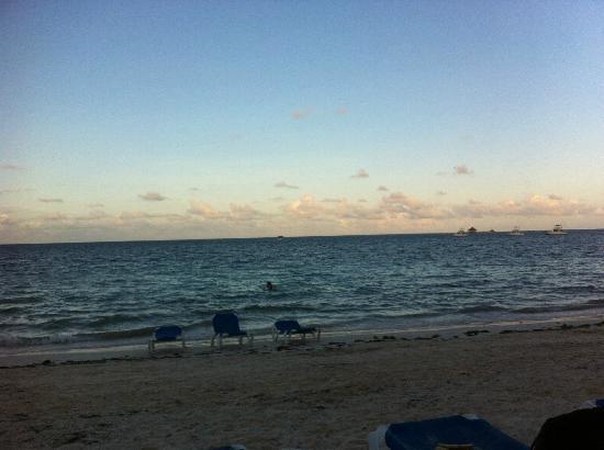 Dreams Palm Beach Punta Cana: The beach
