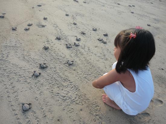 Gabriella que cumplio sus 5 en Playa viva al momento en que las tortugas van al mar