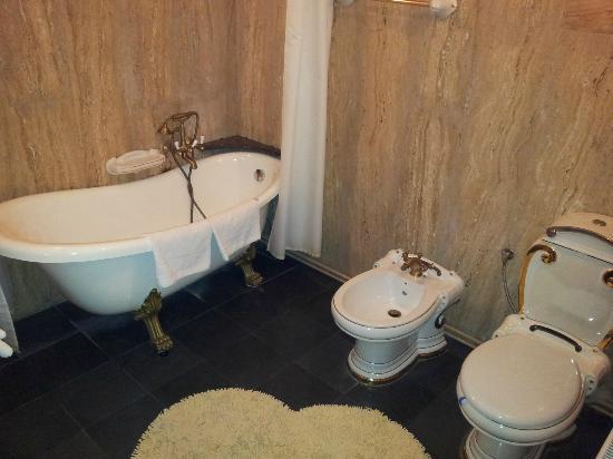 Hunter Prince Castle & Dracula Hotel: Baño del apartamento