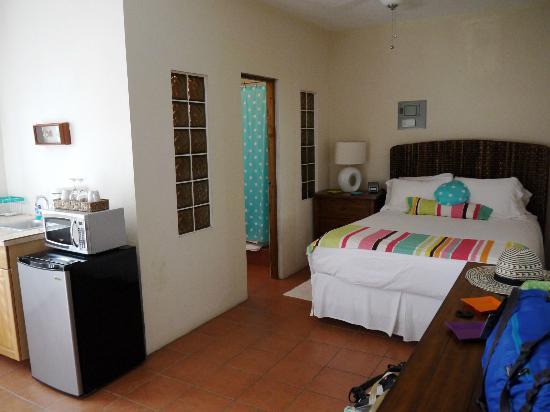 Casa de Tortuga: Room #1